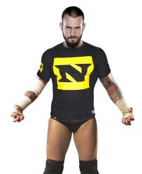Cm Punk Wrestling Gimmicks Biographies